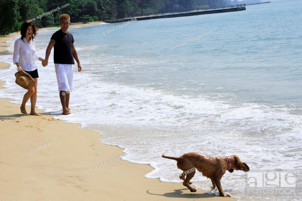 Imagen: Young woman and a mid adult man holding hands and standing on the beach with a dog.