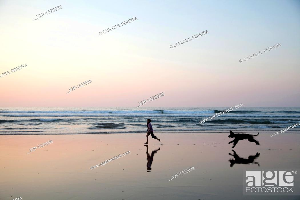 Stock Photo: Girl and afghan dog playing in the beach of Deba, Guipuzcoa, Basque Country, Spain.