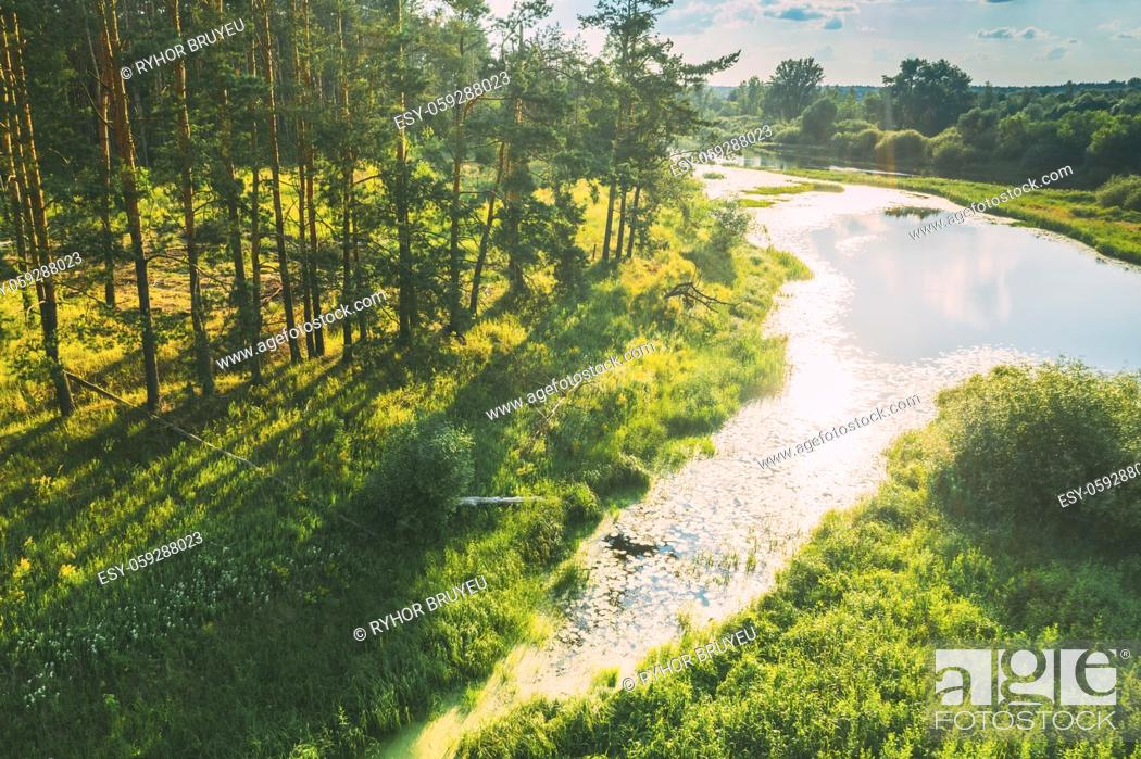 Stock Photo: Belarus. Elevated View Of Green Small Bog Marsh Swamp Wetland And Green Pine Forest Landscape In Sunny Summer Day. High Attitude View.