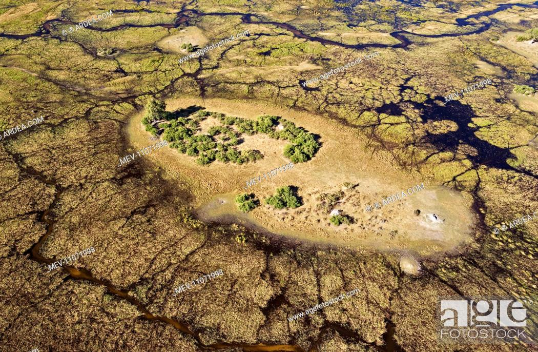 Freshwater marshes with streams, channels and islands aerial