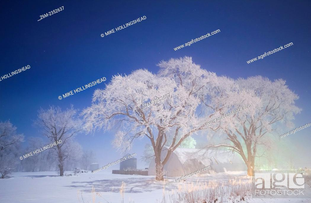 Stock Photo: Moon lights frost covered trees in western IA during bitter cold freezing fog in sub-zero F temps.