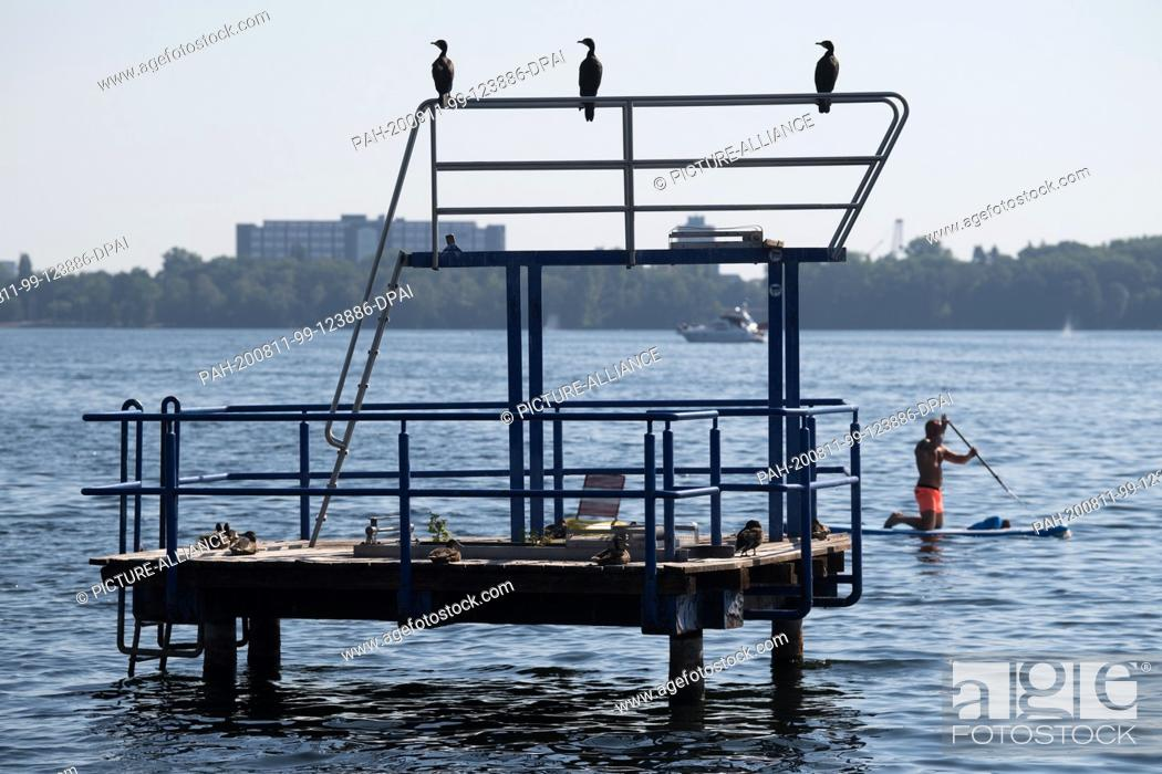 Stock Photo: 11 August 2020, Berlin: View to the diving tower of the lido Tegel. Four years after its closure, the lido Tegel has a private operator again.