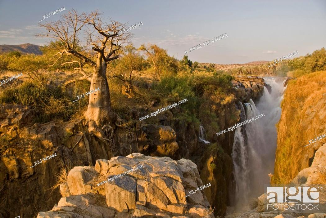 Imagen: Baobab tree on the edge of the Epupa Falls, Northern Namibia, Africa.