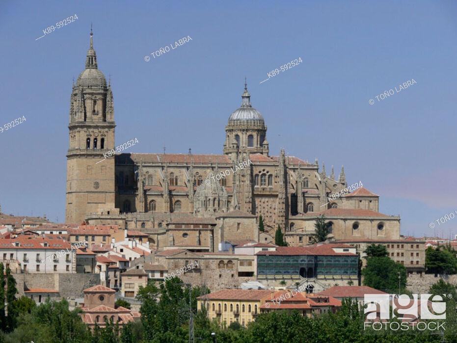Imagen: Cathedrals. Salamanca. Spain.