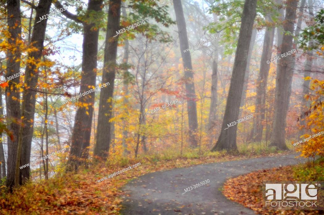Stock Photo: Autumn in very soft focus, Pennsylvania, USA.