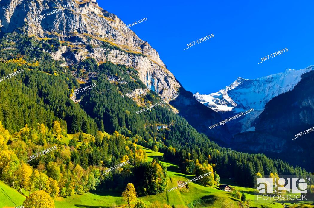 Stock Photo: Grindelwald, Swiss Alps, Canton Bern, Switzerland.