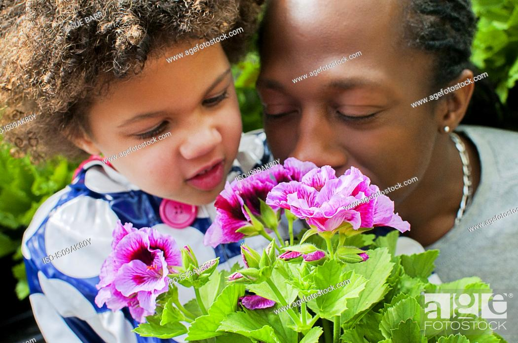 Stock Photo: Close up of father and daughter smelling flowers in garden.