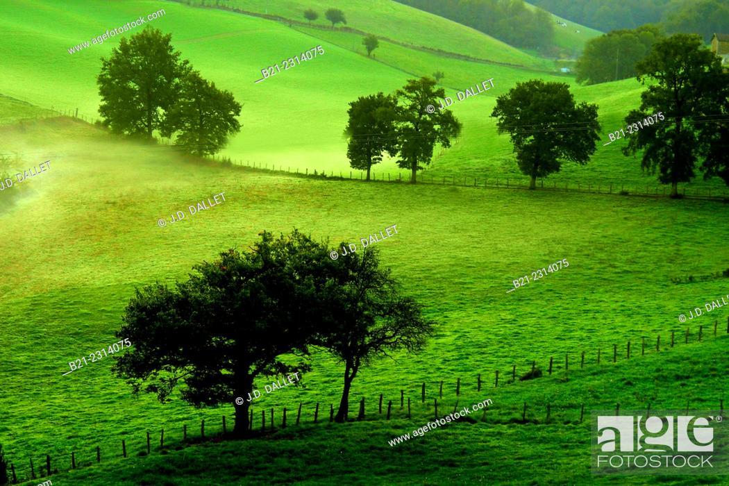 Stock Photo: Landscape by Saint Constant, Cantal, Auvergne, France.