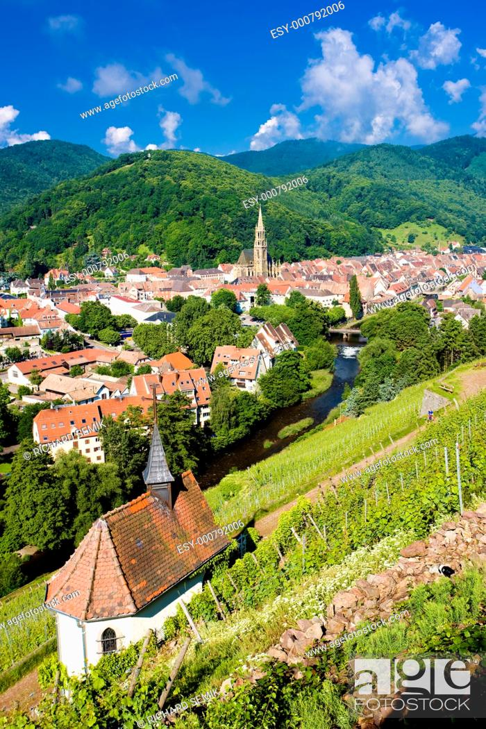 Stock Photo: grand cru vineyard and Chapel of St  Urban, Thann, Alsace, France.