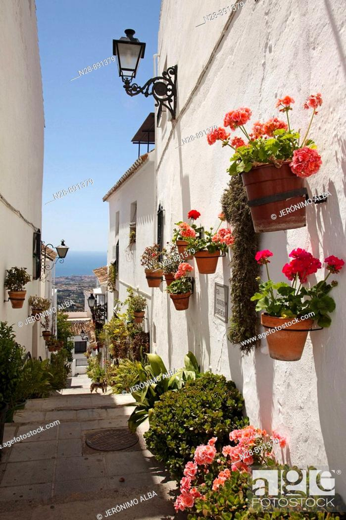 Stock Photo: Street, Mijas, Pueblos Blancos ('white towns'), Costa del Sol, Malaga province, Andalusia, Spain.