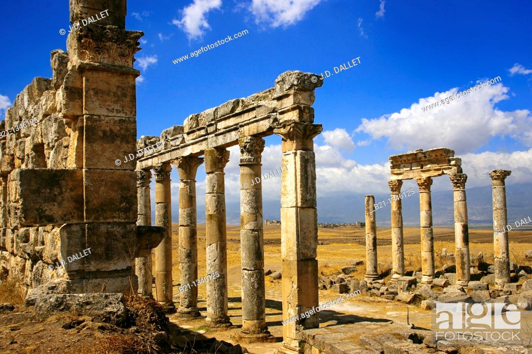 Stock Photo: Syria, Apamea, columns of the citadel. Back, Qa'allat Al-Medik.