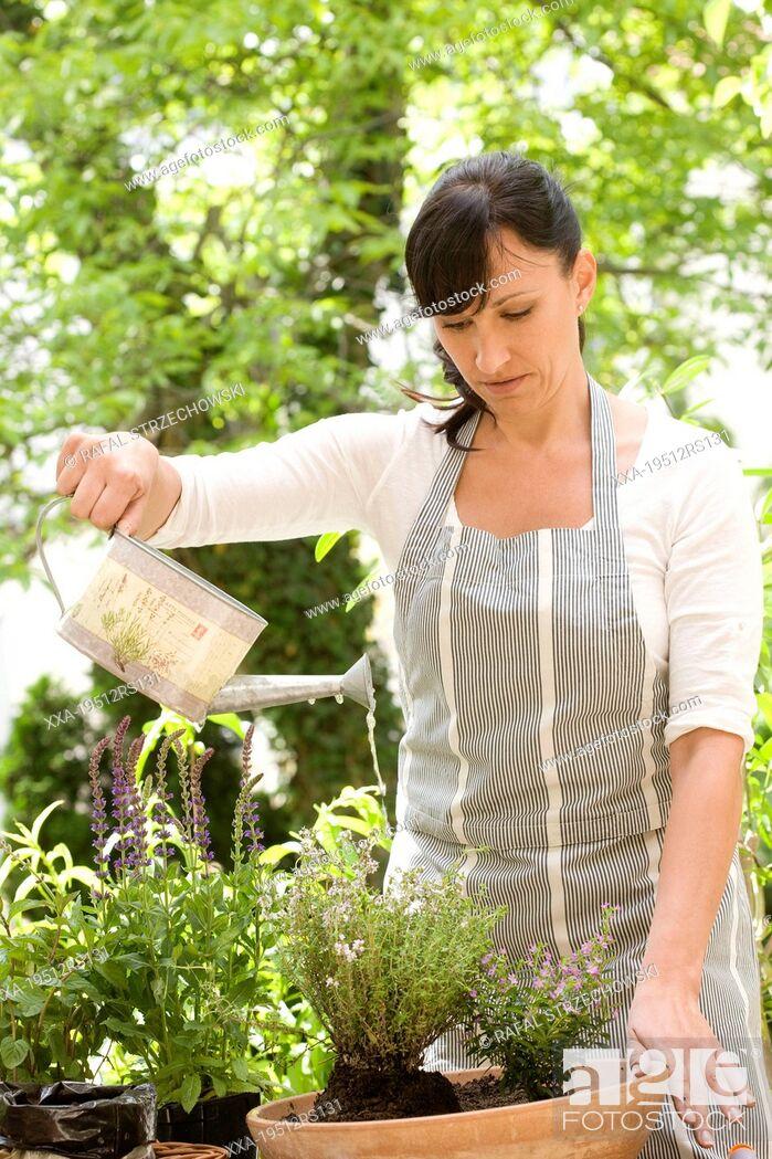 Stock Photo: Woman watering plants in garden.