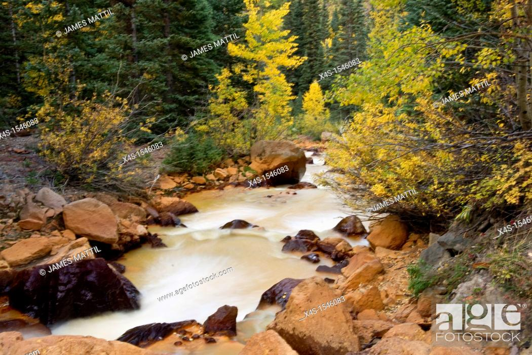 Stock Photo: Yellow waters from local mining adds to the fall color foliage in Colorado high country.