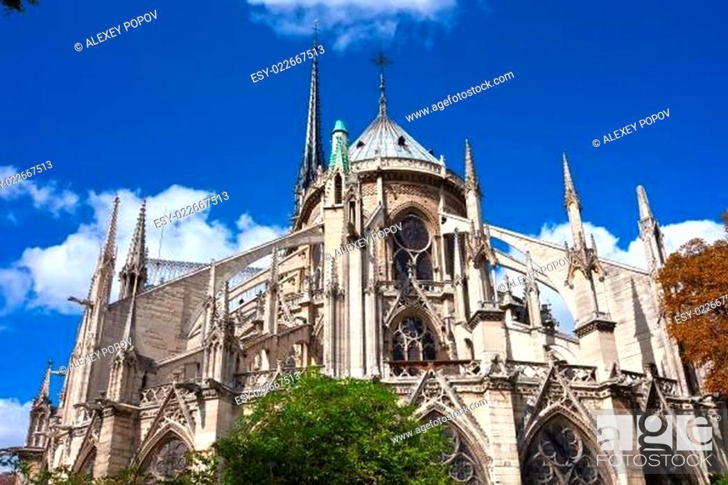 Imagen: Notre Dame de Paris.