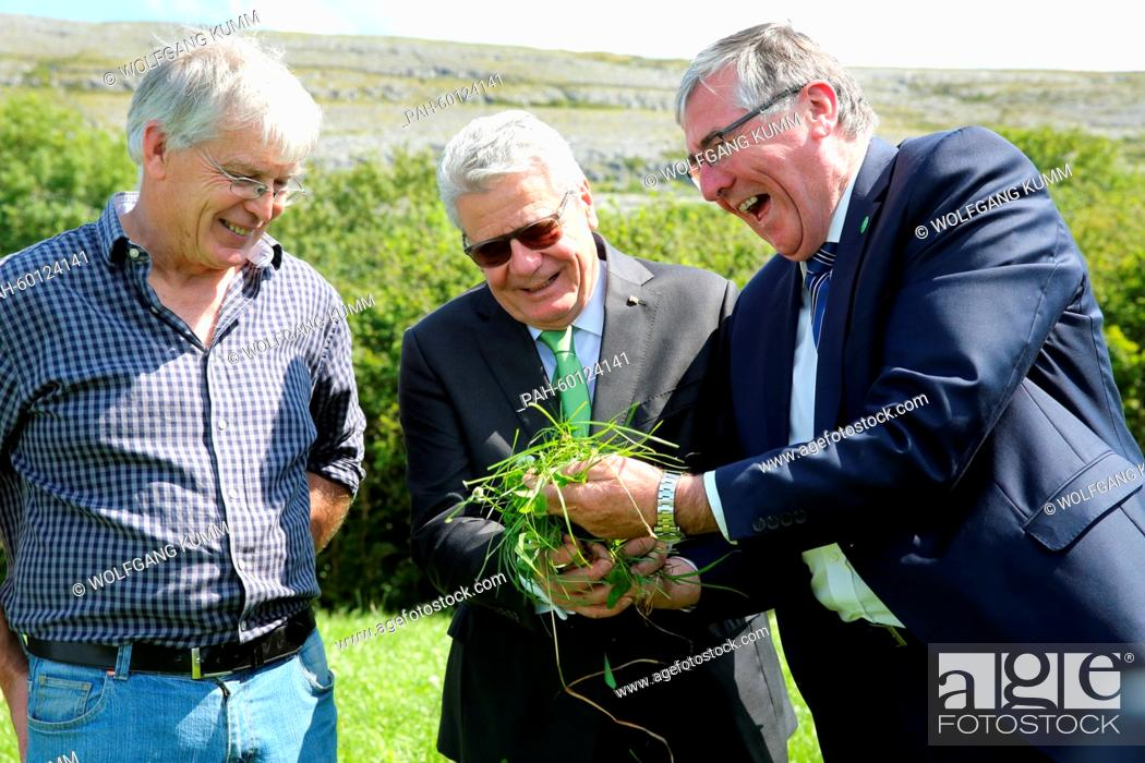 Stock Photo: Irish Minister of State for Food, Horticulture and Food Safety, Tom Hayes (r), shows juicy grass for raisning cattle to German President Joachim Gauck on the.