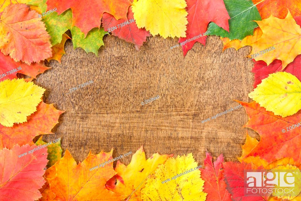 Stock Photo: Autumn leaves over wooden background.With copy space.