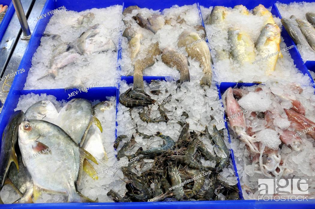 Photo de stock: Marine Fish with squid and shrimps on ice at fishmongers.