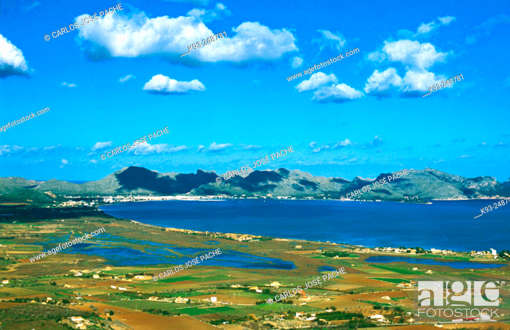 Stock Photo: S'Albufereta Natural Reserve. Pollensa, Majorca. Balearic Islands. Spain.