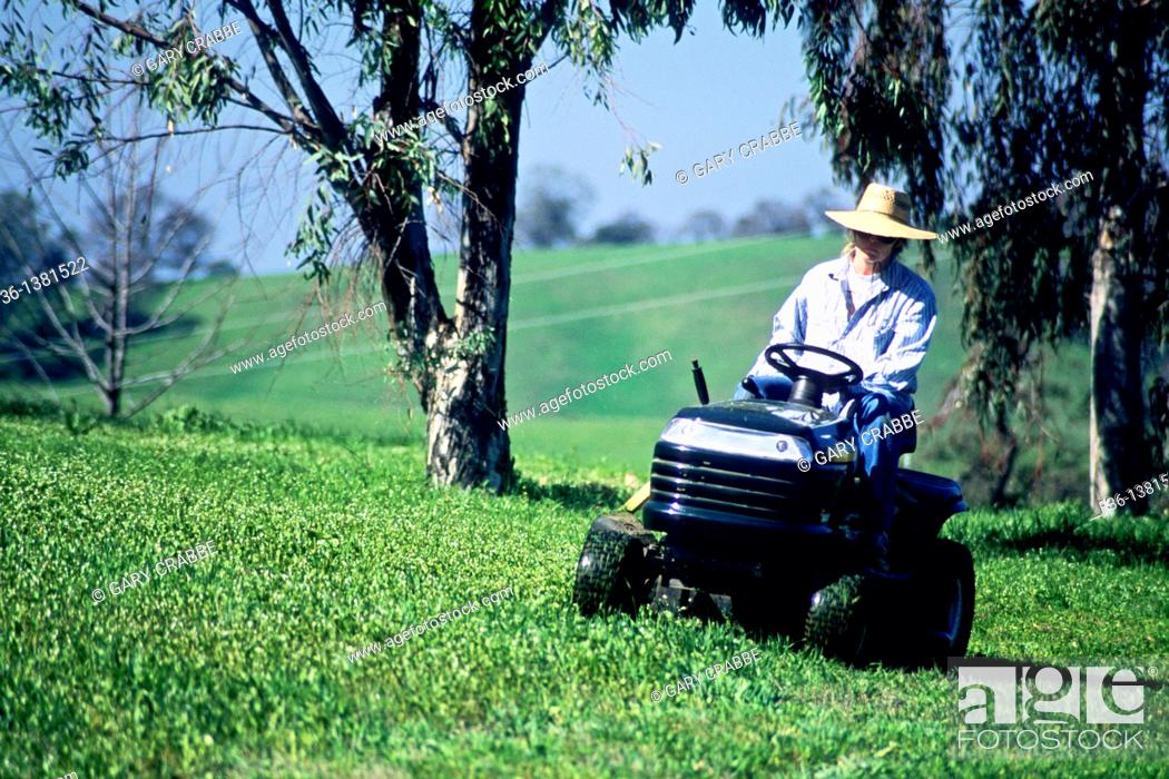 Stock Photo: Woman on lawn tractor near Amador City, Sierra Foothills, Amador County, California.