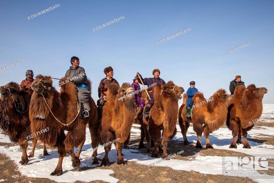 Stock Photo: Spectators, Bactrian camel race, 25km across winter landscape of Gobi desert during Bulgan's 'festival of a thousand camels' , Mongolia.