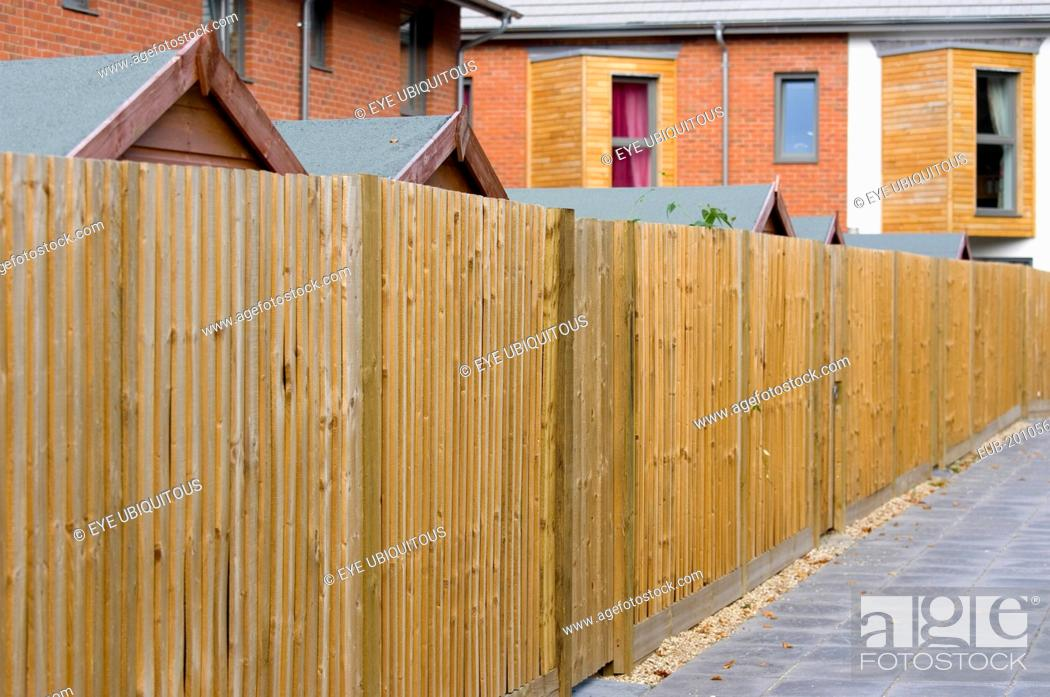 Architecture Back garden wooden fencing and garden sheds of