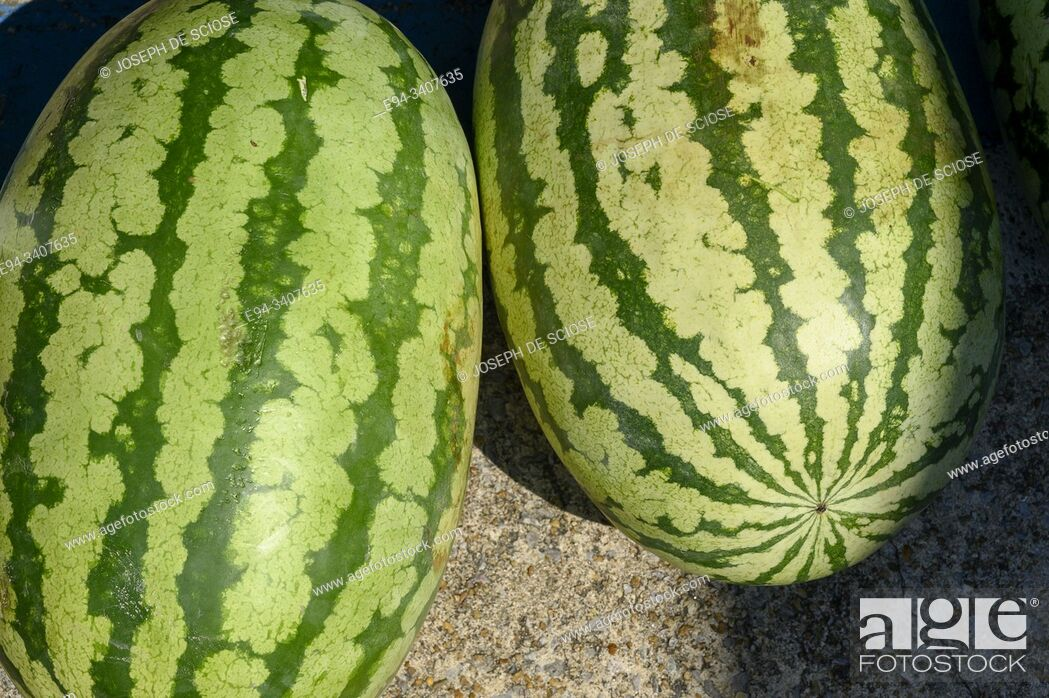 Imagen: 2 Watermelons on display at a market.