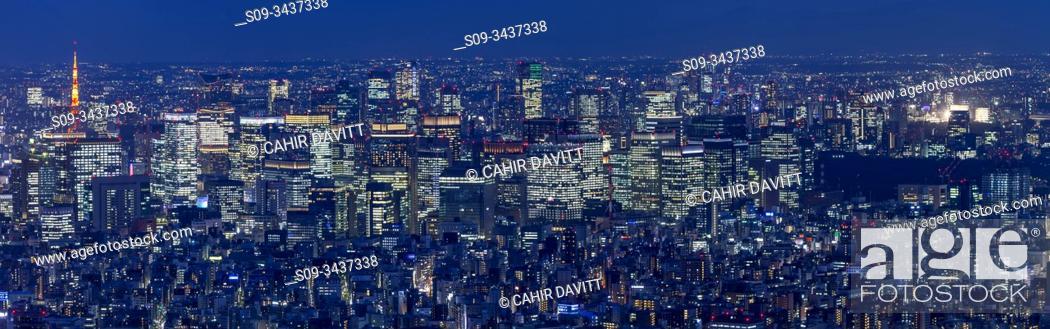 Stock Photo: Panoramic twilight view of Tokyo City, Narihira, Tokyo To, Japan.