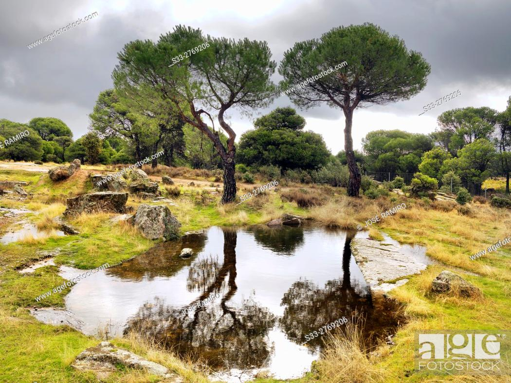 Stock Photo: Puddles in The Piquillo. Cadalso de los Vidrios. Madrid. Spain. Europe.