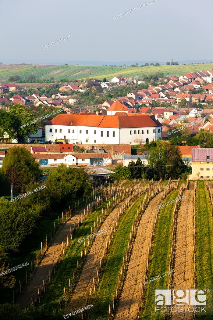 Stock Photo: Cejkovice with vineyard, Czech Republic.