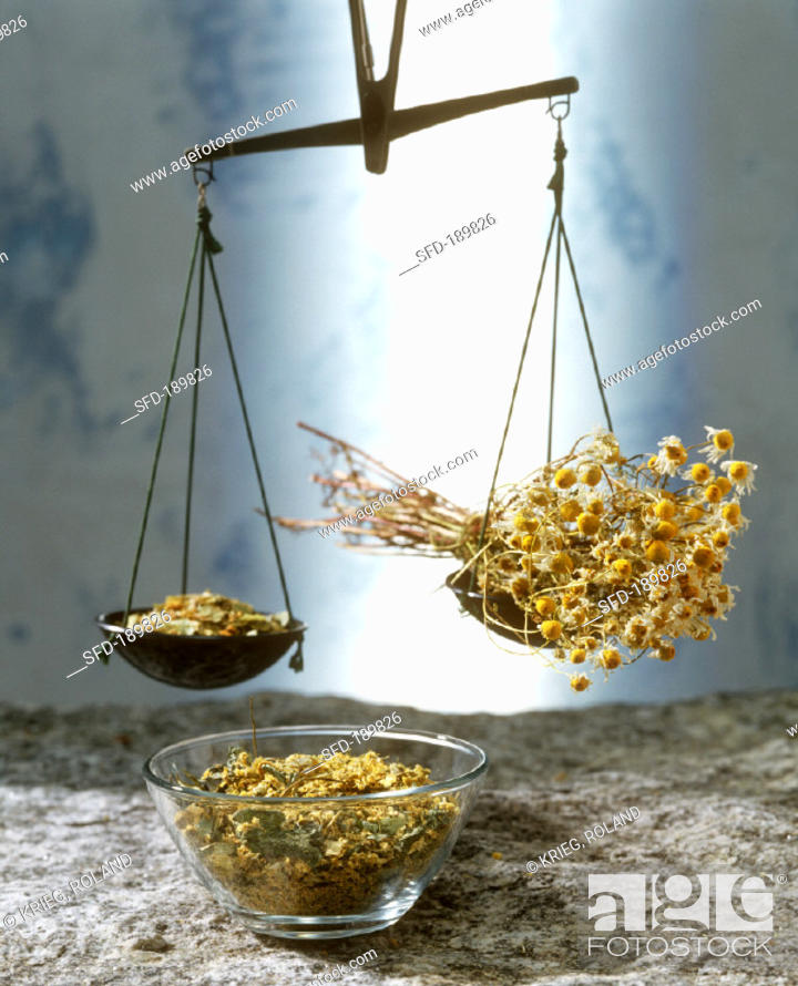 Stock Photo: Beam scales with dried herbs and chamomile flowers.