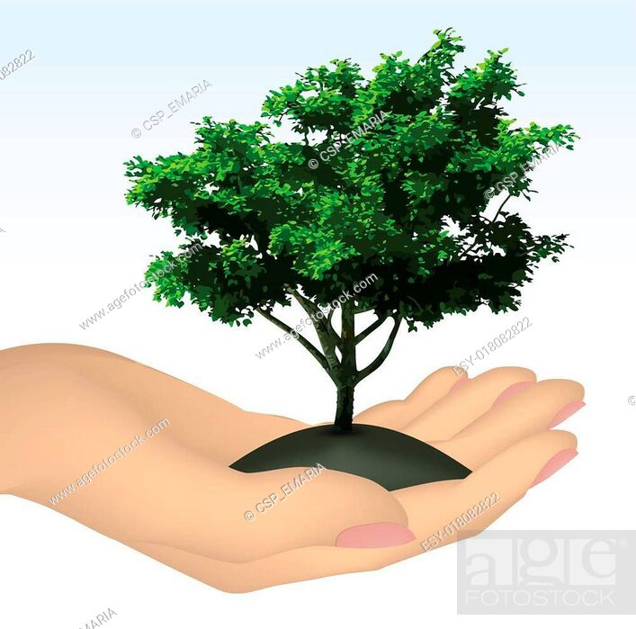 Stock Vector: Human hand with tree. Vector.