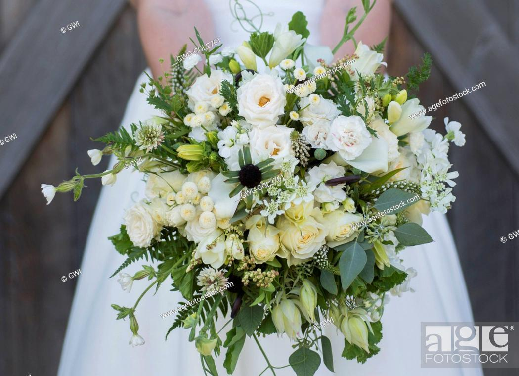 Stock Photo: GREEN AND WHITE THEMED BRIDAL BOUQUET WITH ROSES SCABIOSA CARNATION FERN CLOVER AND WILDFLOWERS.