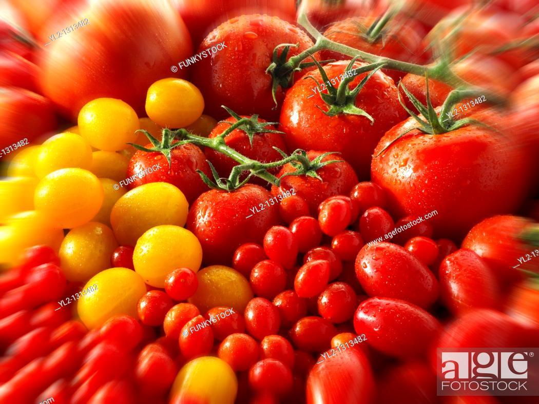 Stock Photo: mixed yellow & red vine tomatoes.