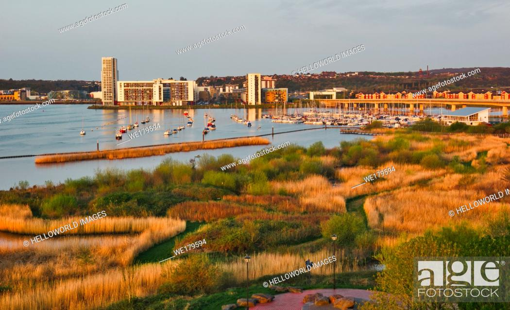 Stock Photo: Cardiff Bay Wetlands Reserve, Cardiff Bay, Cardiff, Wales, United Kingdom.