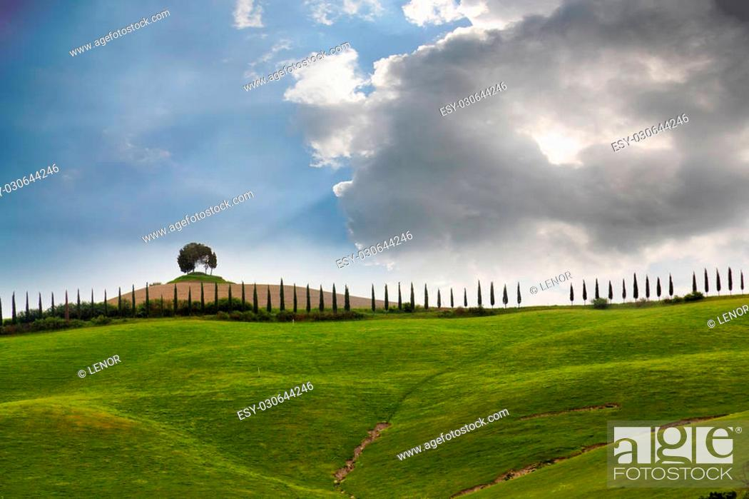 Stock Photo: Big cloud over the cypress avenue, Tuscany, Italy.