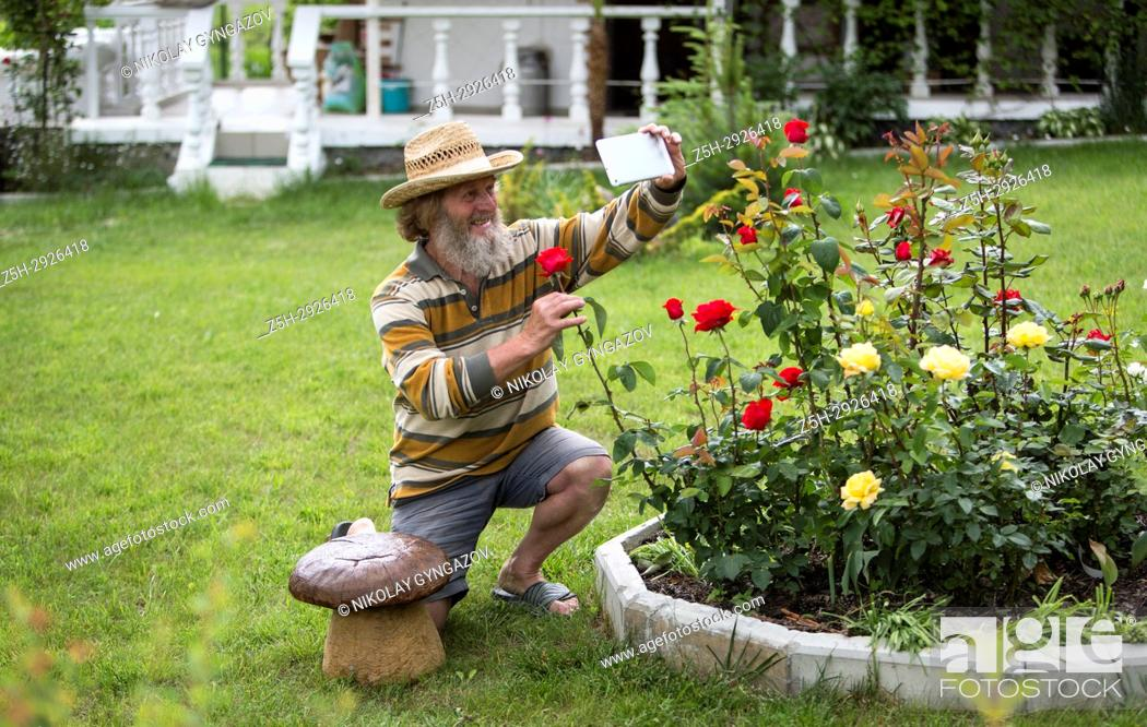 Stock Photo: An elderly man with a beard beside a flower bed with roses.