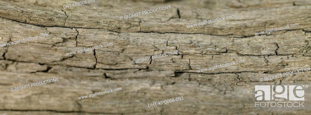 Stock Photo: Wood close up.