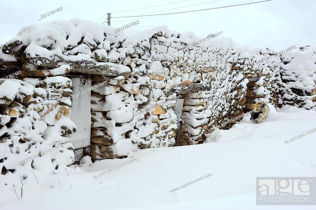 Imagen: Winter. Huertahernando, Guadalajara province, Spain.