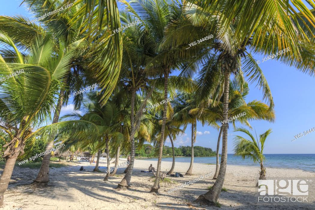 Stock Photo: Playa Larga, Matanzas, Cuba, North America.