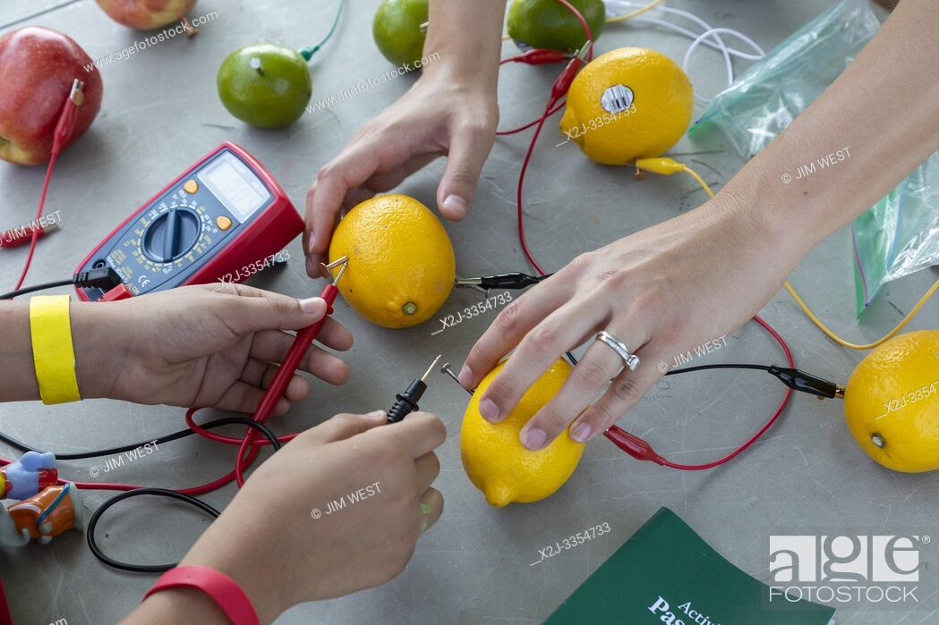 Stock Photo: Detroit, Michigan - Children learn how to make batteries from lemons and other fruit at Metro Detroit Youth Day.