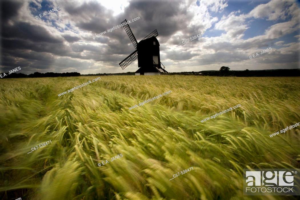 Stock Photo: Pitstone Windmill on a Windy June Day.