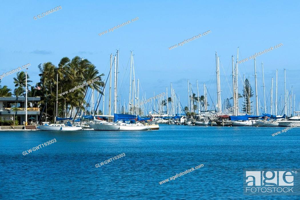 Stock Photo: Sailboats docked at a harbor, Honolulu, Oahu, Hawaii Islands, USA.
