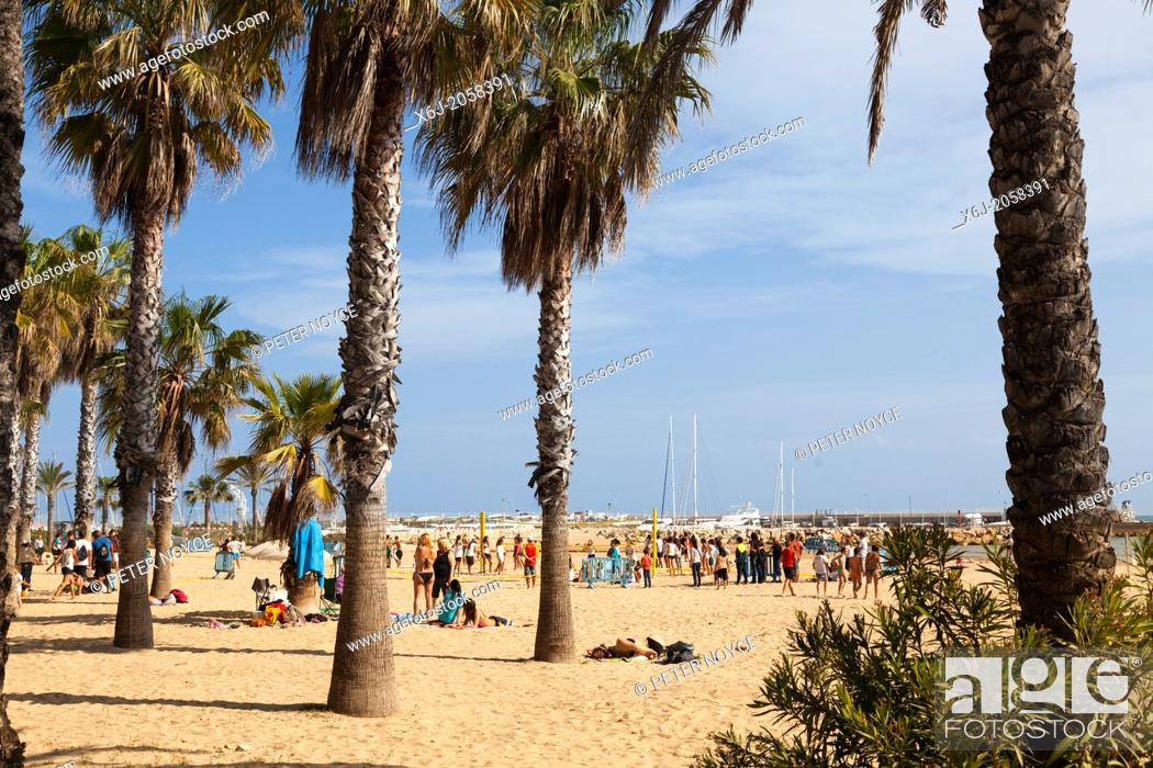 Stock Photo: people under the palm trees on the beach at Salou.