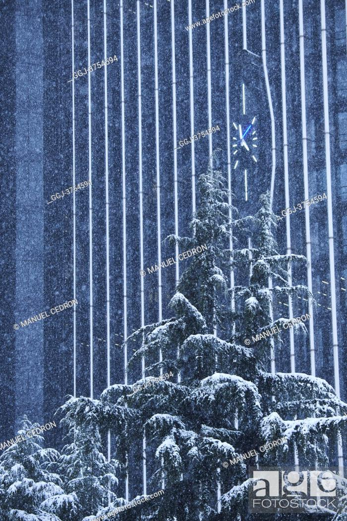 Stock Photo: Trees under snowfall at Paseo de la Castellana after Storm Filomena brought intense snow on January 8, 2021 in Madrid, Spain.