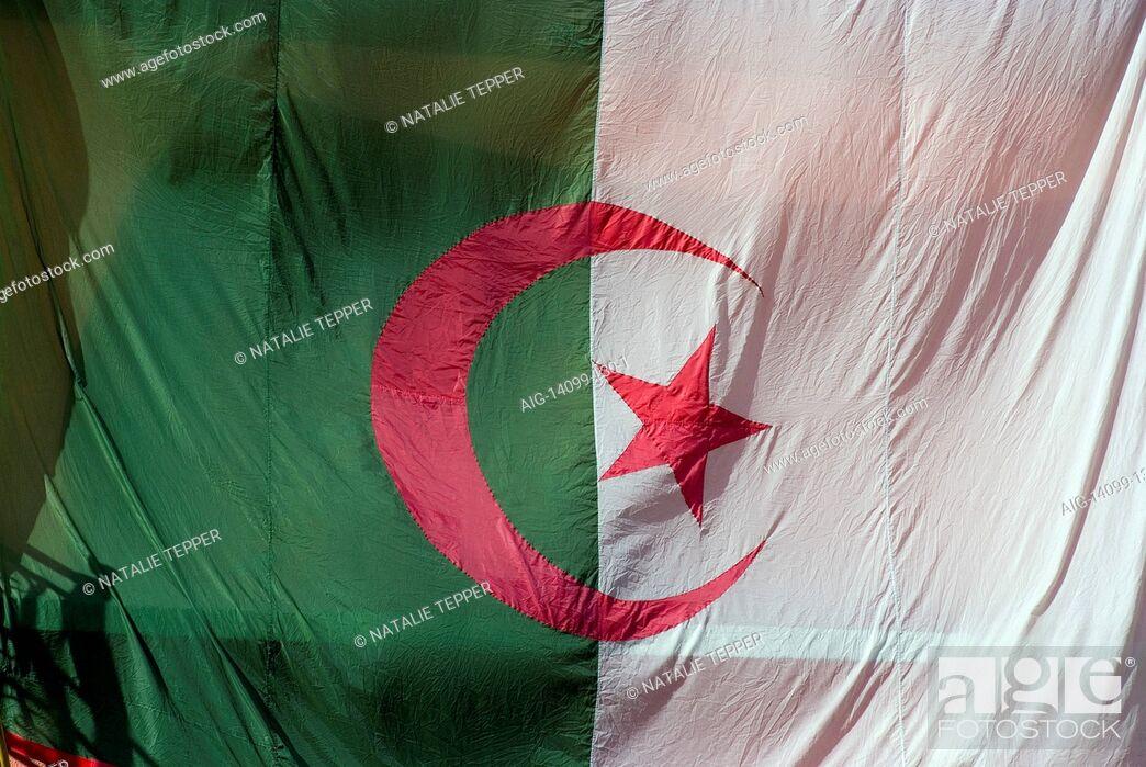 Stock Photo: Algerian flag.