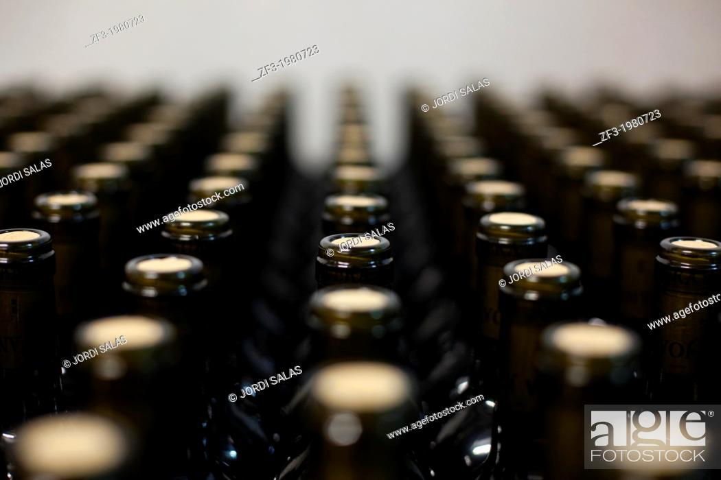 Stock Photo: Bottles of wine stocked in a cellar.