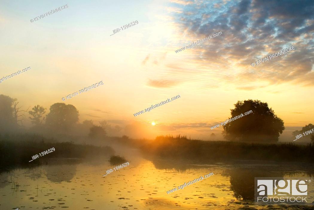 Stock Photo: Lake at the Elbe meadows at sunrise with morning fog, Biosphaerenreservat Mittlere Elbe biosphere reserve in Dessau, Saxony-Anhalt, Germany, Europe.