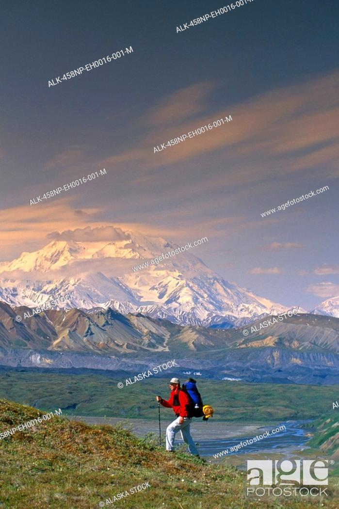 Imagen: Man Hiking on Tundra w/Mt McKinley Denali NP IN AK Summer.