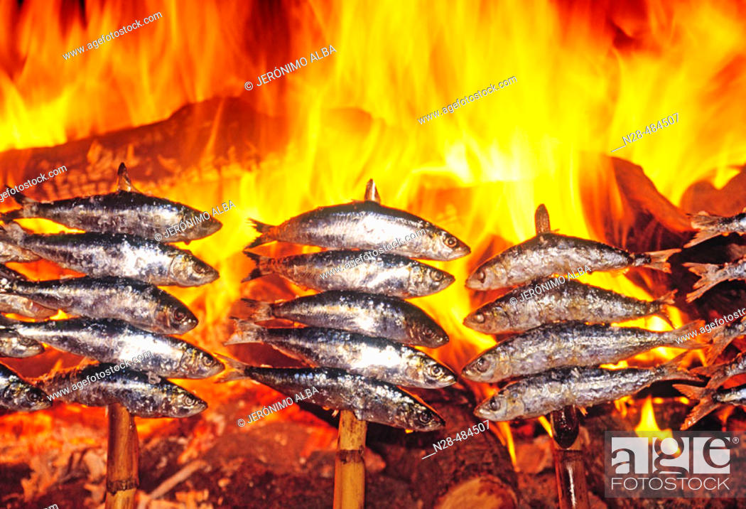Stock Photo: Sardines. Andalucia. Spain.