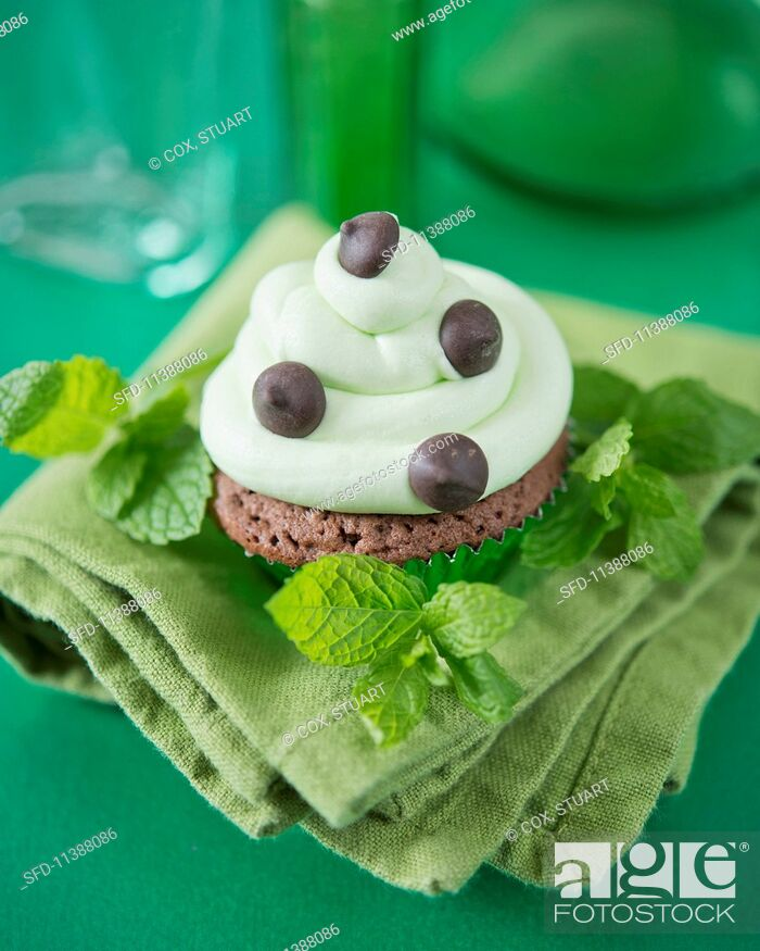 Stock Photo: A mint chocolate chip cupcake.